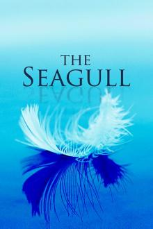 Plays, December 08, 2017, 12/08/2017, The Seagull: Chekhov's Statement on Theater