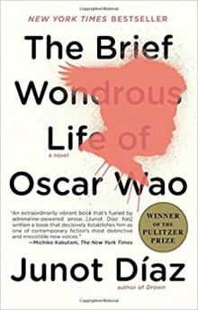 Book Discussions, February 27, 2018, 02/27/2018, Library Book Group: The Brief Wondrous Life of Oscar Wao
