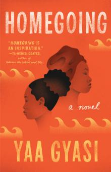 Book Discussions, March 21, 2018, 03/21/2018, Library Book Group:  Homegoing