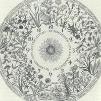 Discussions, March 05, 2018, 03/05/2018, The Botany of Sleep