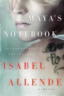 Book Discussions, April 17, 2018, 04/17/2018, Book Club: Maya's Notebook