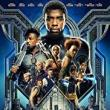 Movie in a Parks, June 12, 2018, 06/12/2018, Black Panther (2018): superhero blockbuster, one of the highest-grossing films of all time (outdoors)