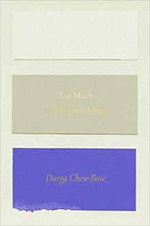 Author Readings, February 27, 2019, 02/27/2019, Too Much and Not The Mood: Poetic Essays