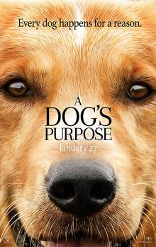 Films, February 06, 2019, 02/06/2019, A Dog's Purpose (2017): The journey of a dog
