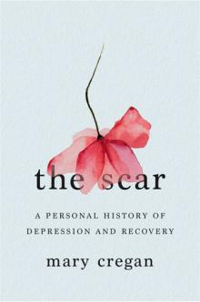 Author Readings, March 28, 2019, 03/28/2019, The Scar: A Personal History of Depression and Recovery