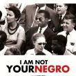 Films, February 23, 2019, 02/23/2019, Documentary: I Am Not Your Negro (2016): Race Issues In Modern America