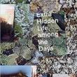 Poetry Readings, March 08, 2019, 03/08/2019, Extra Hidden Life, Among the Days: Award-Winning Poetry