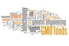 Discussions, March 12, 2019, 03/12/2019, GMOs: Science, Ethics, Risks, Regulations and Food Security