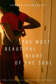 Author Readings, March 07, 2019, 03/07/2019, The Most Beautiful Night of the Soul: More Stories from the Middle East and Beyond