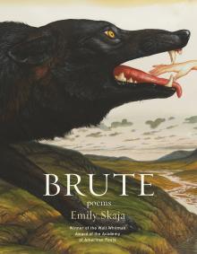 Poetry Readings, April 15, 2019, 04/15/2019, Brute: Fiery, Hypnotic Poems
