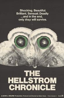 Films, April 07, 2019, 04/07/2019, The Hellstrom Chronicle (1971): Oscar Winning Documentary On The Struggle Between Humans And Insects