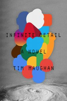 Author Readings, April 17, 2019, 04/17/2019, Infinite Detail: The Consequences of Digital Entwinement