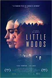 Films, April 06, 2019, 04/06/2019, Little Woods (2018): A Modern Western
