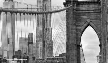 Author Readings, April 11, 2019, 04/11/2019, In the Shadow of Genius: The Brooklyn Bridge and its Creators