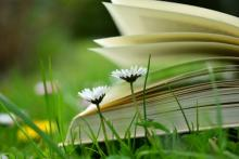 Fairs, May 07, 2019, 05/07/2019, Happy Spring: Free Book Event
