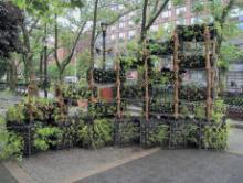 Opening Receptions, June 25, 2019, 06/25/2019, Birdlink: An Interactive Habitat Sculpture