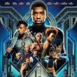 Movie in a Parks, August 15, 2019, 08/15/2019, Black Panther (2018): Oscar-Winning Superhero Epic with Chadwick Boseman, Michael B. Jordan, Lupita Nyong'o (Outdoors)