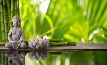 Lessons, September 18, 2019, 09/18/2019, Meditation: Death and Afterlife