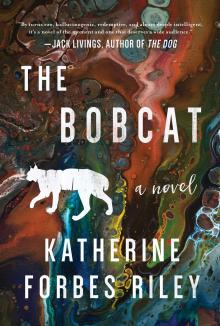 Author Readings, August 08, 2019, 08/08/2019, The Bobcat: Magical Novel Set in Rural Vermont