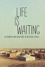 Films, August 07, 2019, 08/07/2019, Life Is Waiting: Referendum and Resistance in Western Sahara (2015): Life Under Occupation