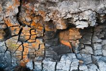 Tours, September 15, 2019, 09/15/2019, Inwood Rocks! Geology Hike
