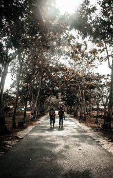 Tours, September 07, 2019, 09/07/2019, Walk in the Park