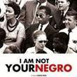 Films, November 01, 2019, 11/01/2019, I Am Not Your Negro (2016): James Baldwin's Unfinished Manuscript