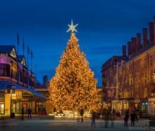 Festivals, December 02, 2019, 12/02/2019, WinterLand Holiday Tree Lighting
