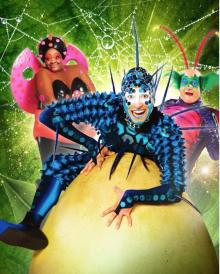 Performances, October 05, 2020, 10/05/2020, Cirque du Soleil: Behind the Curtain of OVO (virtual)