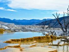 Tours, December 29, 2020, 12/29/2020, Yellowstone's Mammoth Hot Springs Terraces (live-streamed from the site, virtual)