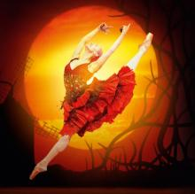 Dance Performances, January 05, 2021, 01/05/2021, Don Quixote by The Royal Ballet (virtual, streaming for 24 hours)