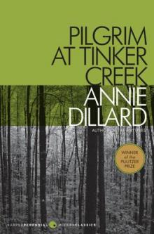 Book Clubs, January 26, 2021, 01/26/2021, Annie Dillard's Pilgrim at Tinker Creek: Pulitzer Prize Winner (virtual)