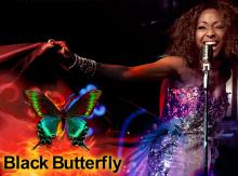 Musicals, February 06, 2021, 02/06/2021, Black Butterfly with Broadway Actors, feat. Jazz, Hip-Hop, Opera, Broadway, Blues and Soul Music (virtual)