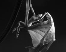 Performances, April 01, 2021, 04/01/2021, (IN-PERSON) Aerialists and Acrobats: Works-in-Progress and Show-Ready Acts