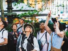 Birdwatchings, June 03, 2021, 06/03/2021, (IN-PERSON) Birding Tour in Midtown