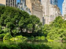 Park Walks, June 01, 2021, 06/01/2021, Welcome Tour of Southern Central Park (virtual)