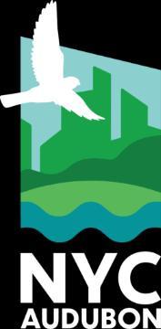 Birdwatchings, October 16, 2021, 10/16/2021, Island Bird Walk