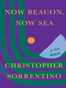 Author Readings, September 07, 2021, 09/07/2021, Now Beacon, Now Sea: A Son's Memoir (livestream)