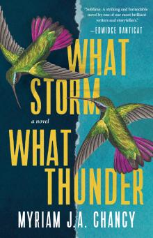 Author Readings, October 06, 2021, 10/06/2021, What Storm, What Thunder: A Haunting New Novel (livestream)