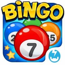 Workshops, August 17, 2017, 08/17/2017, Bingo Night for Adults