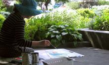 Workshops, September 06, 2017, 09/06/2017, Elements of Nature Drawing